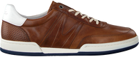 Cognac VAN LIER Lage sneakers 2017804  - medium