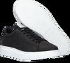 Zwarte GOOSECRAFT Lage sneakers JULIAN CUPSOLE  - small