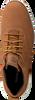 Cognac TIMBERLAND Sneakers KILLINGTON HALF CAB  - small