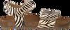 Bruine CLIC! Sandalen CL GRASS - small