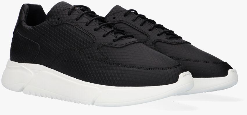Zwarte REHAB Lage sneakers HEDLEY TRIANGLE  - larger