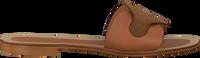 Cognac NOTRE-V Slippers 18701  - medium