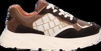 Bruine TANGO Lage sneakers KADY FAT  - medium