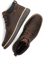 Bruine TIMBERLAND Hoge sneaker CROSS MARK GTX CHUKKA  - medium