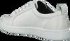 Witte CALVIN KLEIN Sneakers DANYA  - small