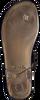 Bruine MICHAEL KORS Sandalen MK PLATE JELLY  - small