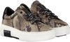 Beige REPLAY Sneakers GINKO  - small