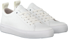 Witte BLACKSTONE Sneakers RL63  - small