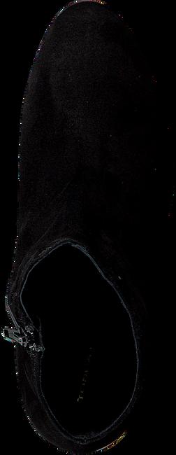 Zwarte TOSCA BLU SHOES Enkellaarsjes SF1720S811  - large