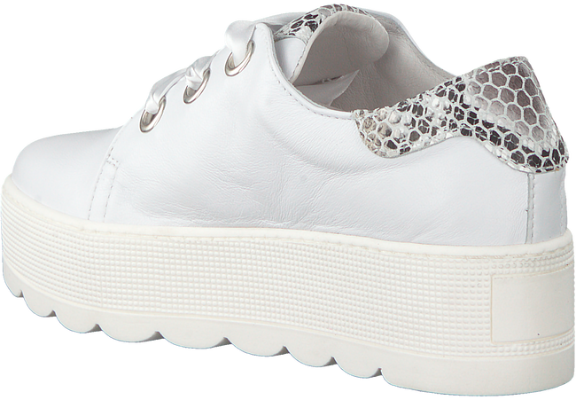Witte ROBERTO D'ANGELO Sneakers 605  - large