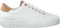 Witte PAUL GREEN Lage sneakers 4741  - medium