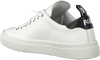 Witte P448 Lage sneakers SHANE MEN  - small