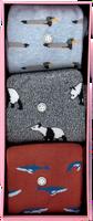 Multi Alfredo Gonzales Sokken ANIMALS BOX  - medium