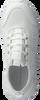 Witte CALVIN KLEIN Sneakers REIKA  - small