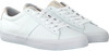 Witte POLO RALPH LAUREN Sneakers SAYER  - small