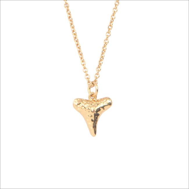 Gouden ATLITW STUDIO Ketting SOUVENIR NECKLACE TOOTH - large