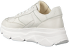 Witte NOTRE-V Sneakers 608 - small