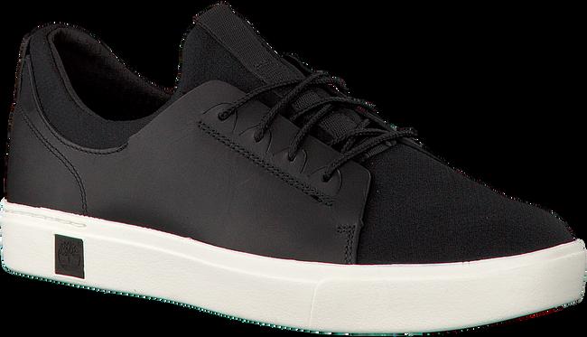 Zwarte TIMBERLAND Sneakers AMHERST TRAINER SNEAKER  - large