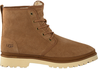 Cognac UGG Veterboots HARKLAND MEN'S - medium