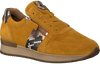 Camel GABOR Sneakers 420  - small