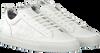 Witte P448 Sneakers SOHO MEN  - small