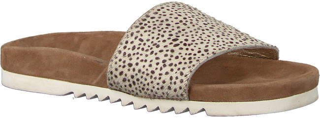 Beige MARUTI Slippers BERLIN - large