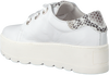 Witte ROBERTO D'ANGELO Sneakers 605  - small