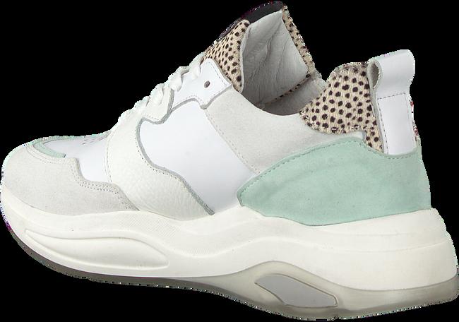 Witte MARUTI Lage sneakers FARO  - large