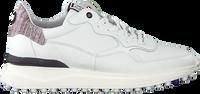 Witte FLORIS VAN BOMMEL Lage sneakers 16301  - medium