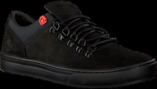 Zwarte TIMBERLAND Sneakers ADV 2.0 CUPSOLE ALPINE - large