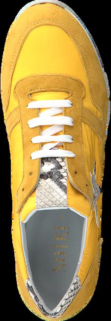 Gele NOTRE-V Sneakers AG251  - large