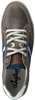 Grijze AUSTRALIAN Sneakers GLADSTONE - small