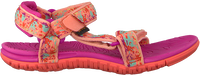 Roze TEVA Sandalen HURRICANE 3  - medium