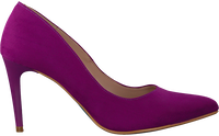 Paarse GIULIA Pumps G.8.GIULIA  - medium