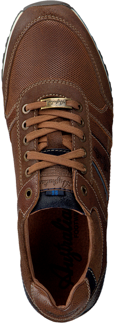 Bruine AUSTRALIAN Lage sneakers CONDOR  - large