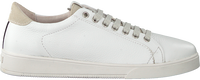 Witte BLACKSTONE Lage sneakers RL84  - medium