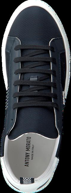 Blauwe ANTONY MORATO Lage sneakers MMFW01253  - large